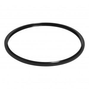 PCP-00008-EC-22cm Sealing Ring